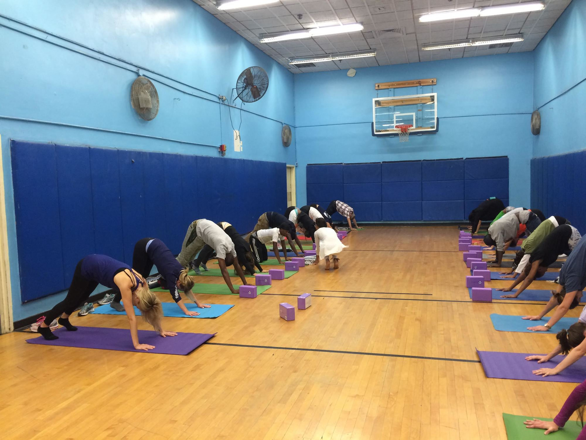 Building strength through yoga - New York Junior League NYJL